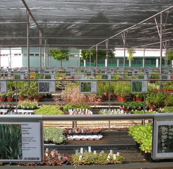 tuincentrum
