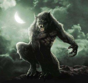 werewolf-weerwolf.jpg?w=310&h=305