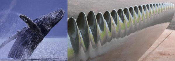 whaleblade