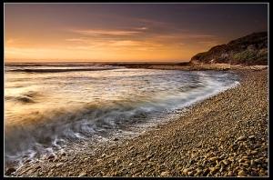 Levende oceaan