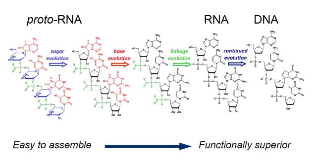 protoRNA-evolution_web