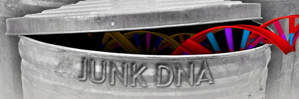 junk-dna-header-600x200