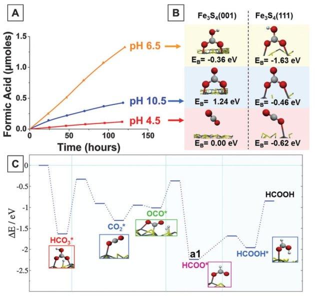 A. De vorming van mierenzuur in functie van tijd bij verschillende pH-waarden. B. Weergave van de reactanten (zie insets) op twee verschillende oppervlakten in functie van pH, binding energie (EB). C. potentieel energie-oppervlak voor het mechanisme van HCO3 reductie naar HCOOH op Fe3S4. Geadsorbeerde tussensoorten zijn gemerkt met * en hun voorgestelde structuur wordt getoond in de inset.