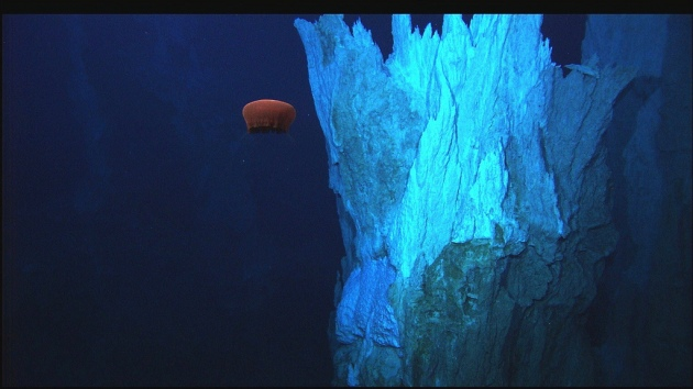 alkaline hydrothermale bron