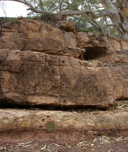 GSSP site in de Ediacara Hills, waar rudimentaire sporen van leven zijn gevonden - Ediacaran biota (GSSP is een keurmerk voor geologisch belangrijke locaties)